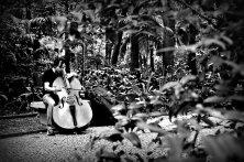 Musico ensaiando no Parque Thrianon Masp   SP   Elza Cohen
