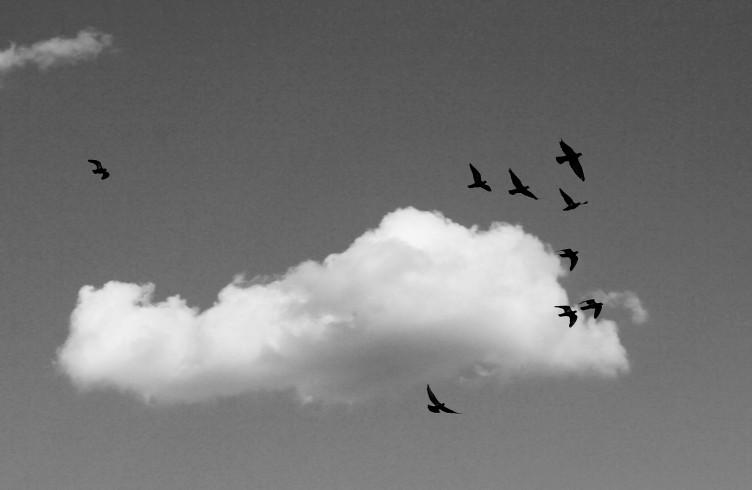 minimal  - o ceu de montes claros | MG | foto  Elza CohenIMG_2652